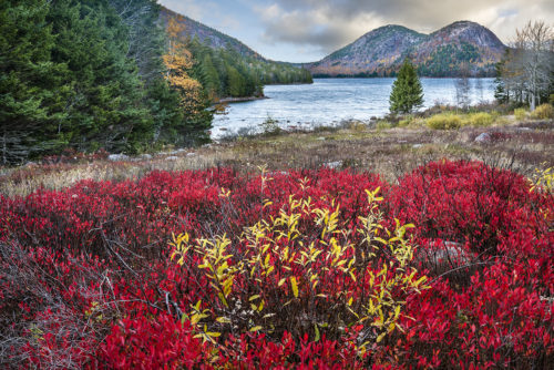 #210 - Jordan Pond - Acadia National Park - Maine