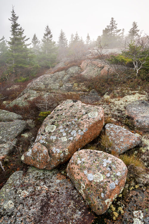 #212 - Mountain Art - Cadillac Mountain - Acadia National Park - Maine