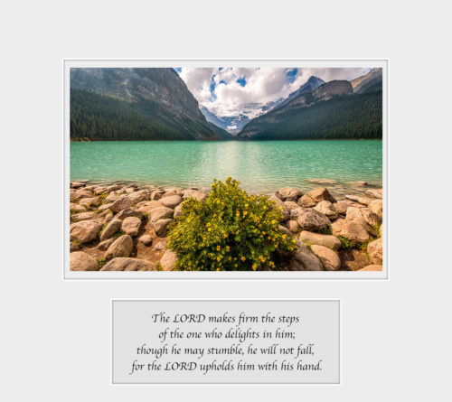 Quiet-Grandeur-Lake-Louise-Banff-National-Park-Alberta-Canada-